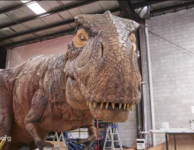 Australia's Robotic Dinosaurs (Hello World short)